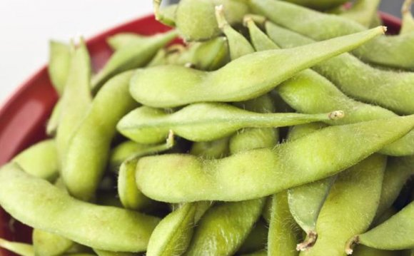 Differences Between Soybeans