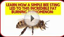 Bees Secret to Lose Weight Fast with E-Factor Diet Plan