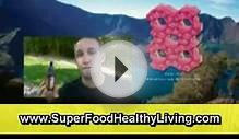 Healthy Diet Plan For Weight Loss, Raw Organic Superfoods